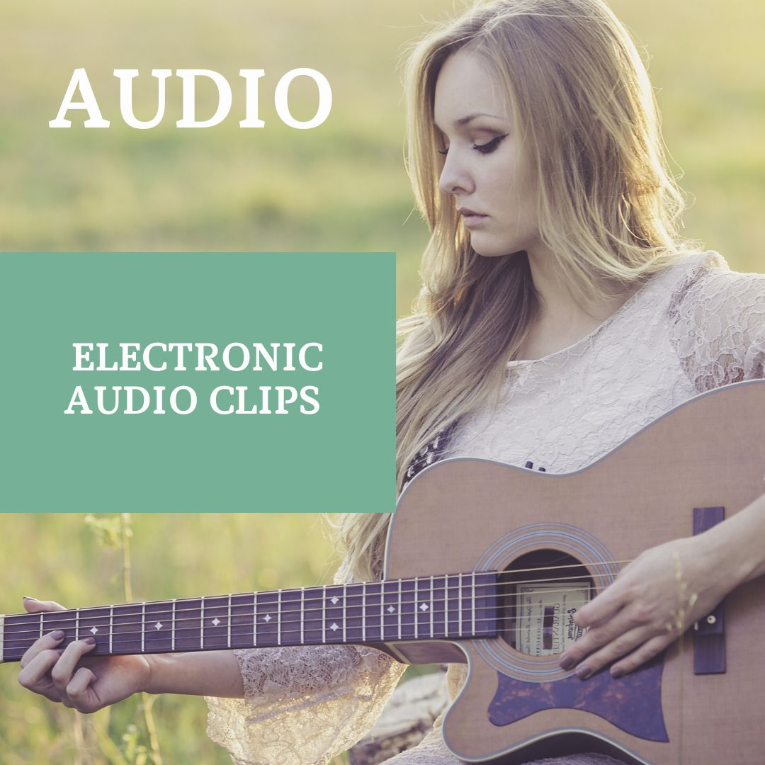 Electronic Audio Clips