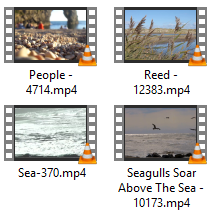 Beach Stock Video Clips in 1080p